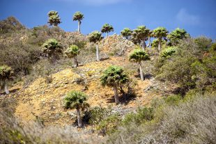 Hiking Curacao